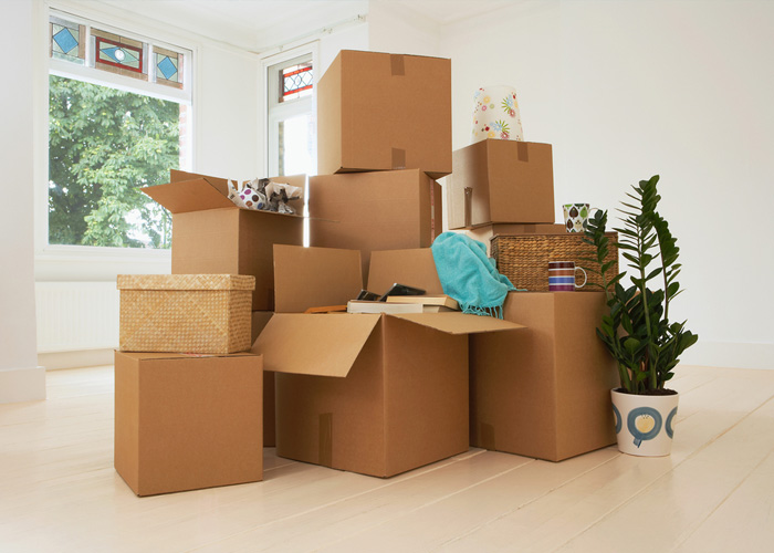 Packing Services.
